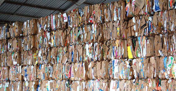 Los Angeles environmentally friendly green company recycles old corrugated container boxes